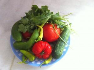 Bahçeden Sofraya Doğal, sağlıklı..