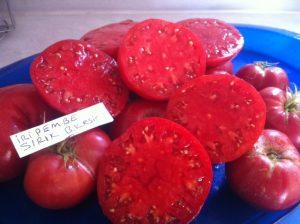 İri Koyu Pembe yayvan Domates-Balıkesir